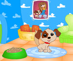 Sevimli Ev Köpeği