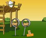 Hamster Fırlat