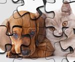 Kedi ve Köpek Puzzle