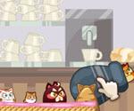 Kedi Nişanı