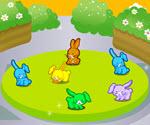 Tavşan Parkı