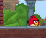 Angry Birds Kaçış