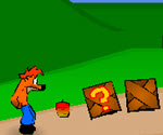 Crash Bandicoot Macera