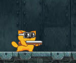 Kedi Yolu Macerası