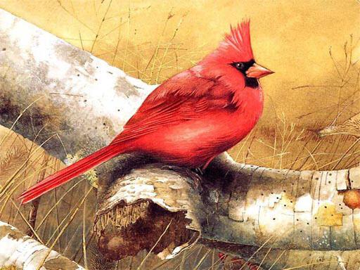 Sanat Kuşları Yapboz
