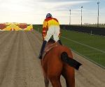 At Sürme Yarışı