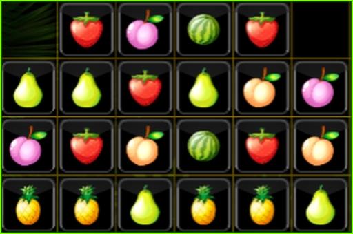 Meyve Blokları
