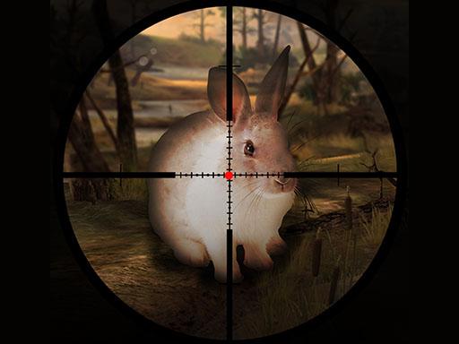 Tavşan Avlama