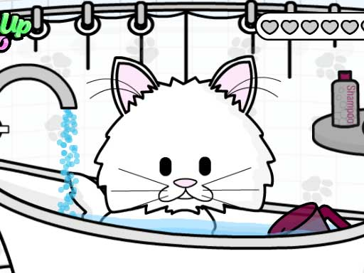 Kedi Bakım Salonu