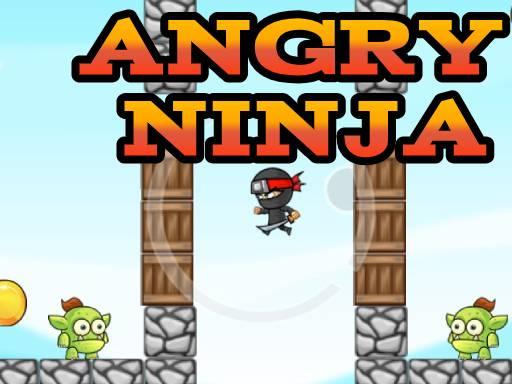 Kızgın Ninja