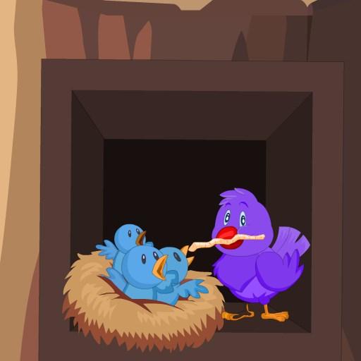 Pembe Kuş