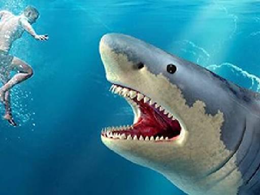 Avcı Köpek Balığı