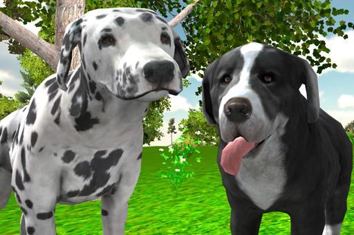 Köpek Simülasyonu
