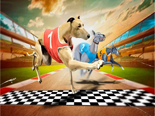 Çılgın Köpek Yarışları