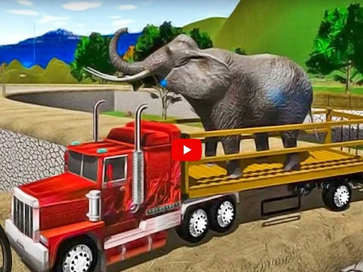 Hayvan Taşıma