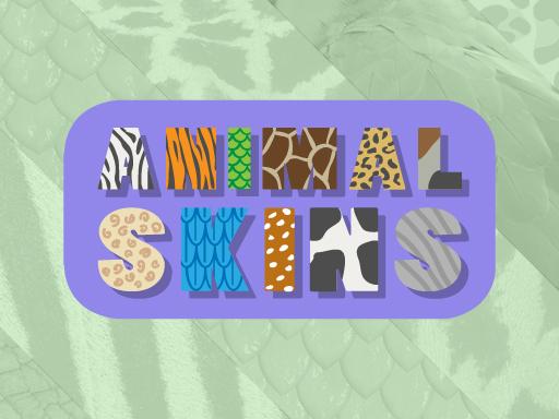 Hayvan Desenleri