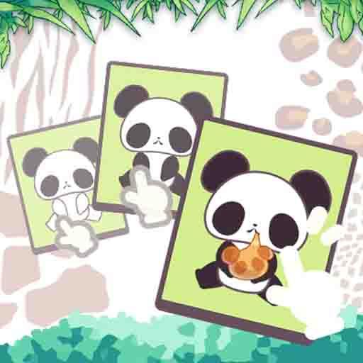 Panda Becerisi