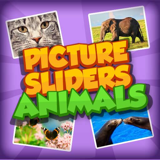 Hayvan Resim Parçaları