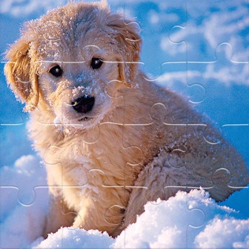 Kış Hayvanları Yapbozu