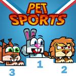 Evcil Hayvan Olimpiyatları