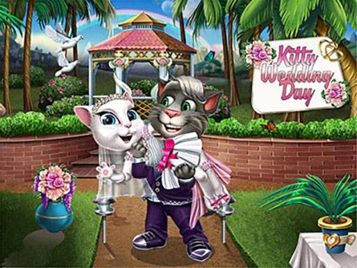 Kedinin Düğün Günü