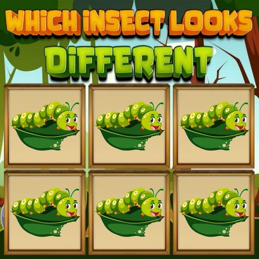 Hangi Böcek Farklı
